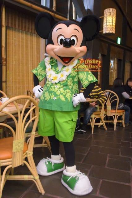 リロのルアウ・アンド・ファンのミッキーマウス