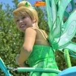 ピクシーホロウの妖精