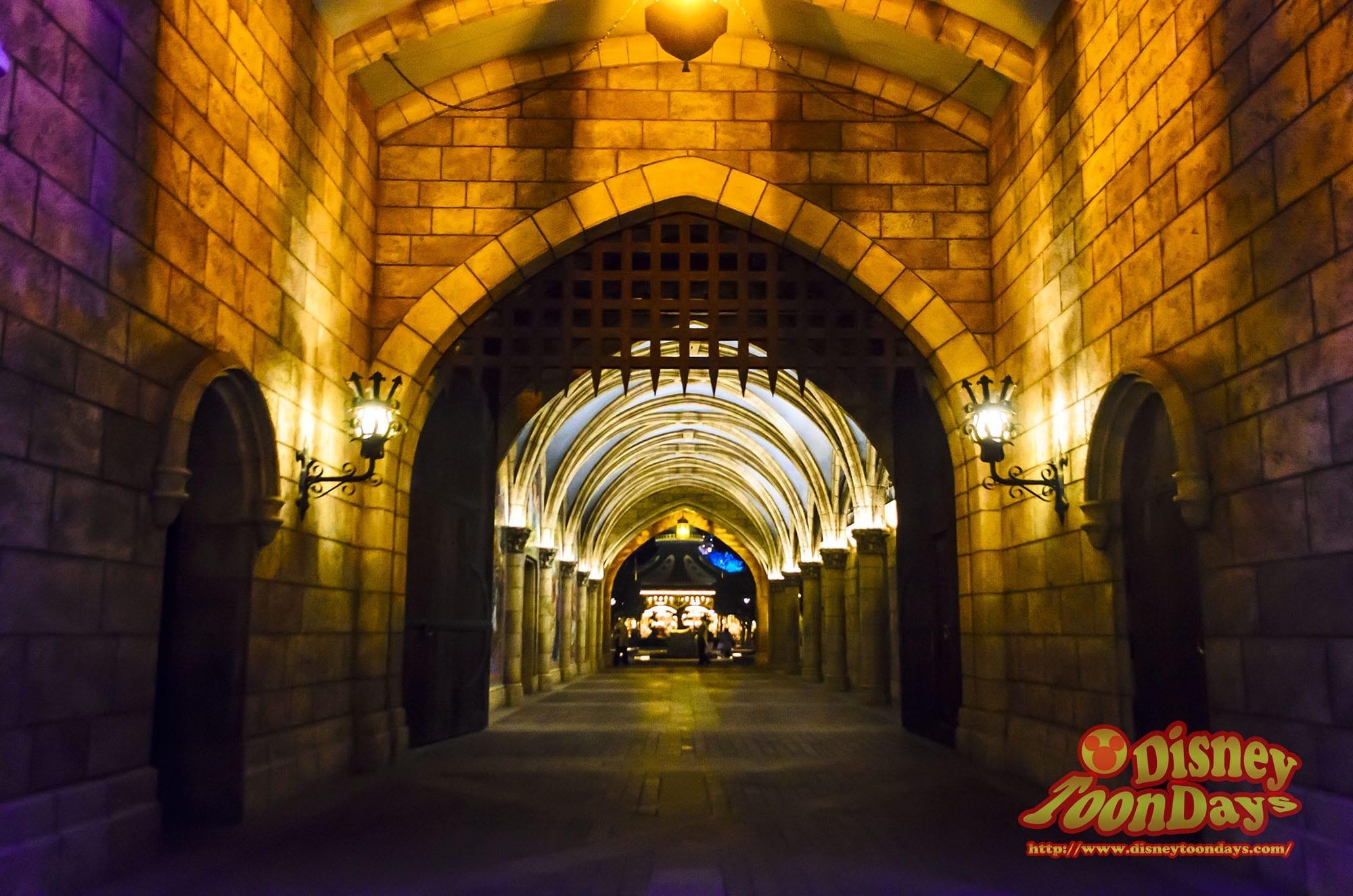 TDL ディズニーJCBカード5周年記念スペシャルナイトat東京ディズニーランド プライベートイブニングパーティー ファンタジーランド 風景