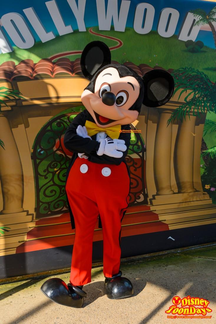 DLP ウォルトディズニースタジオ トゥーンスタジオ グリーティング ミッキーマウス