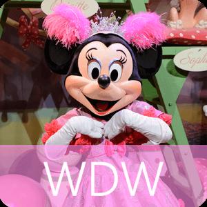 WDW ウォルトディズニーワールド
