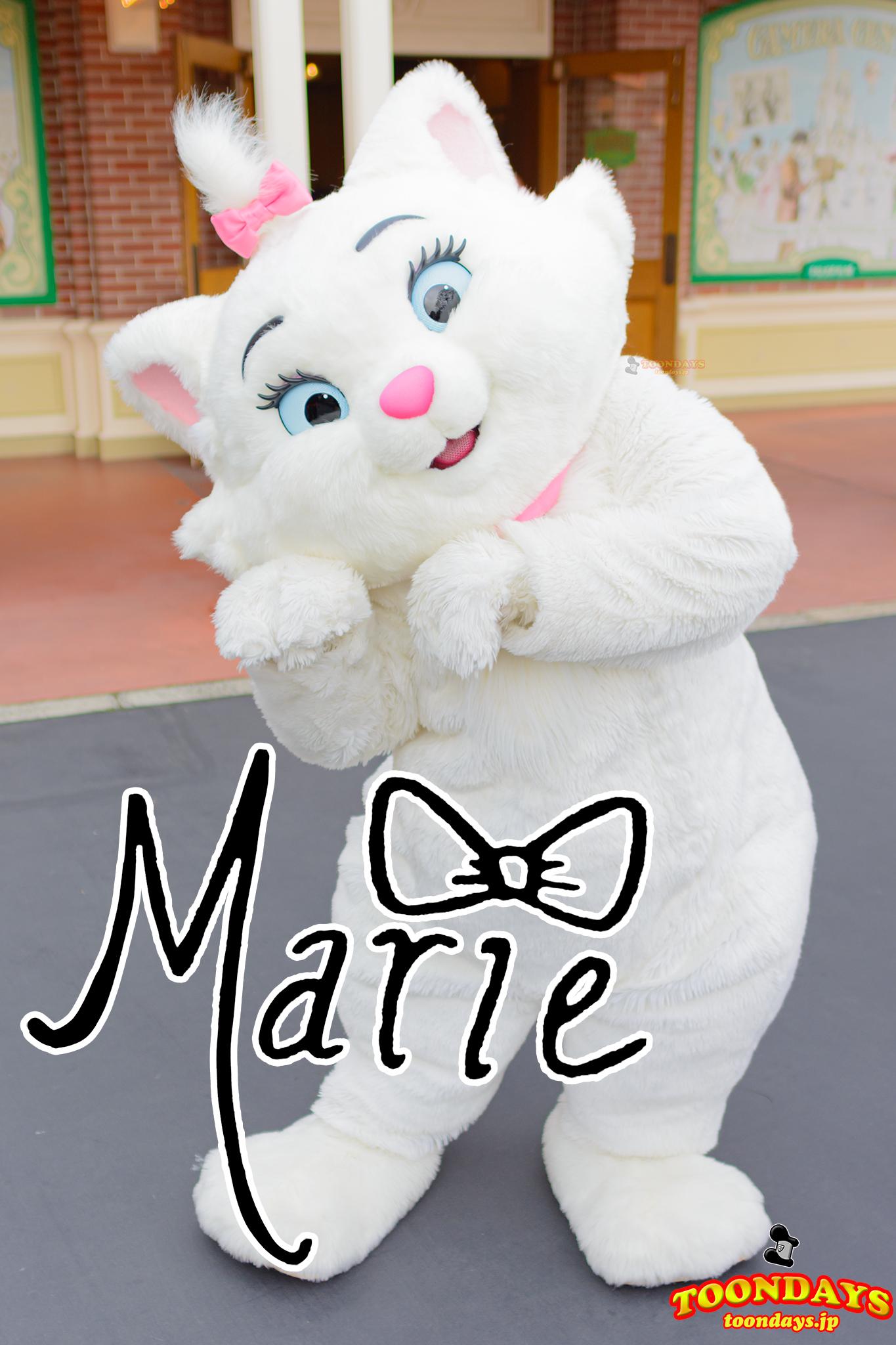 『おしゃれキャット』のマリーのプロフィール